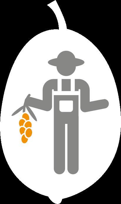 Icon Ernte