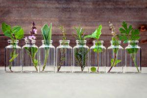 Phytotherapie mit Sanddornfruchtfleischöl